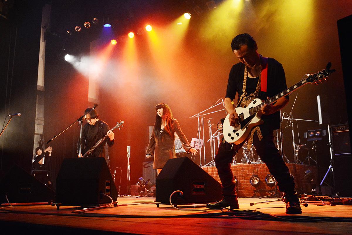 SHANDI ライブ